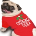Kiss Me Chrismas Dog Tee Shirt - rrm-kissme