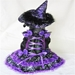 LED Purple  Dog Witch Costume - pam-pur-witch