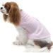 Leave Me Breathless Hand Smocked  Dog Sweater - on-breathless