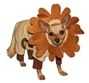 Lion King Dog Costume kosher, hanukkah, toy, jewish, toy, puppy bed,  beds,dog mat, pet mat, puppy mat, fab dog pet sweater, dog swepet clothes, dog clothes, puppy clothes, pet store, dog store, puppy boutique store, dog boutique, pet boutique, puppy boutique, Bloomingtails, dog, small dog clothes, large dog clothes, large dog costumes, small dog costumes, pet stuff, Halloween dog, puppy Halloween, pet Halloween, clothes, dog puppy Halloween, dog sale, pet sale, puppy sale, pet dog tank, pet tank, pet shirt, dog shirt, puppy shirt,puppy tank, I see spot, dog collars, dog leads, pet collar, pet lead,puppy collar, puppy lead, dog toys, pet toys, puppy toy, dog beds, pet beds, puppy bed,  beds,dog mat, pet mat, puppy mat, fab dog pet sweater, dog sweater, dog winte