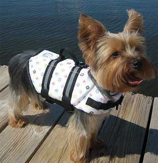 Louie Paws Aboard Dog Life Jacket