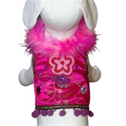 Mardi Gras Dog Harness Vest & Lead