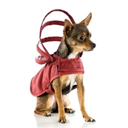 Maroon Dog Raincoats wooflink, susan lanci, dog clothes, small dog clothes, urban pup, pooch outfitters, dogo, hip doggie, doggie design, small dog dress, pet clotes, dog boutique. pet boutique, bloomingtails dog boutique, dog raincoat, dog rain coat, pet raincoat, dog shampoo, pet shampoo, dog bathrobe, pet bathrobe, dog carrier, small dog carrier, doggie couture, pet couture, dog football, dog toys, pet toys, dog clothes sale, pet clothes sale, shop local, pet store, dog store, dog chews, pet chews, worthy dog, dog bandana, pet bandana, dog halloween, pet halloween, dog holiday, pet holiday, dog teepee, custom dog clothes, pet pjs, dog pjs, pet pajamas, dog pajamas,dog sweater, pet sweater, dog hat, fabdog, fab dog, dog puffer coat, dog winter jacket, dog col