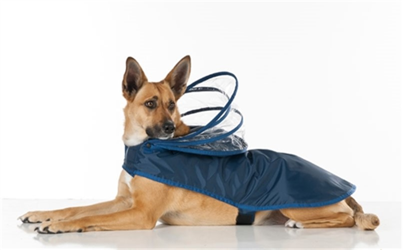 Navy Blue Dog Raincoats  - push-navy-coat