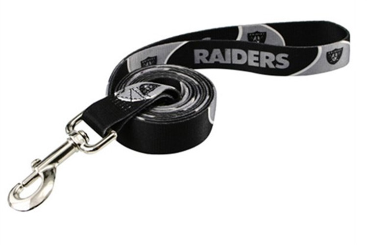 Oakland Raiders Dog Collar & Leash - dn-raiders-collar