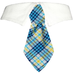 Owen Dog Tie Set