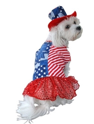 Patriotic Dog Dress & Hat