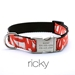 Personalized Collar & Lead Ricky - fdc-ricky