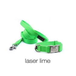 Personalized Collar & Lead in Laser Lime