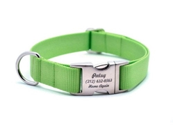 Personalized Collar & Lead in Lime Zest