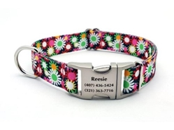 Personalized Daisy Fields Polyester Collar & Lead Roxy & Lulu, wooflink, susan lanci, dog clothes, small dog clothes, urban pup, pooch outfitters, dogo, hip doggie, doggie design, small dog dress, pet clotes, dog boutique. pet boutique, bloomingtails dog boutique, dog raincoat, dog rain coat, pet raincoat, dog shampoo, pet shampoo, dog bathrobe, pet bathrobe, dog carrier, small dog carrier, doggie couture, pet couture, dog football, dog toys, pet toys, dog clothes sale, pet clothes sale, shop local, pet store, dog store, dog chews, pet chews, worthy dog, dog bandana, pet bandana, dog halloween, pet halloween, dog holiday, pet holiday, dog teepee, custom dog clothes, pet pjs, dog pjs, pet pajamas, dog pajamas,dog sweater, pet sweater, dog hat, fabdog, fab dog, dog puffer coat, dog winter ja