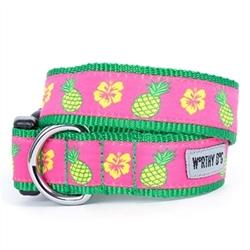 Pineapples Dog Collar   Lead pet clothes 9f0fcb73f6c7