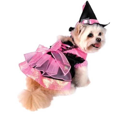 Pink & Black Shiny Witch Dog Costume - pam-witch-costume