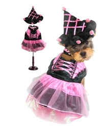 Pink Pom Pom Witch Costume dog bowls,susan lanci, puppia,wooflink, luxury dog boutique,tonimari,pet clothes, dog clothes, puppy clothes, pet store, dog store, puppy boutique store, dog boutique, pet boutique, puppy boutique, Bloomingtails, dog, small dog clothes, large dog clothes, large dog costumes, small dog costumes, pet stuff, Halloween dog, puppy Halloween, pet Halloween, clothes, dog puppy Halloween, dog sale, pet sale, puppy sale, pet dog tank, pet tank, pet shirt, dog shirt, puppy shirt,puppy tank, I see spot, dog collars, dog leads, pet collar, pet lead,puppy collar, puppy lead, dog toys, pet toys, puppy toy, dog beds, pet beds, puppy bed,  beds,dog mat, pet mat, puppy mat, fab dog pet sweater, dog sweater, dog winter, pet winter,dog raincoat, pet raincoat,