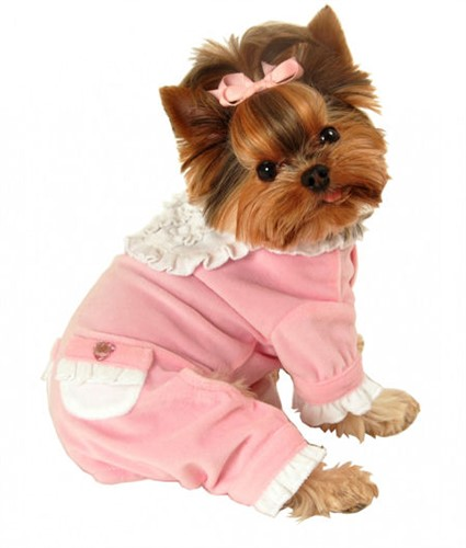 Pink & White Sweety Jumper - hip-sweety
