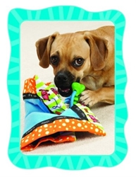Play N Snuggle Dog Blankie Toy