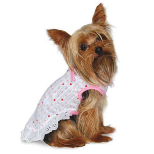 Polka Dot Ruffle Dog Dress - Dgo-polkdressX-81L