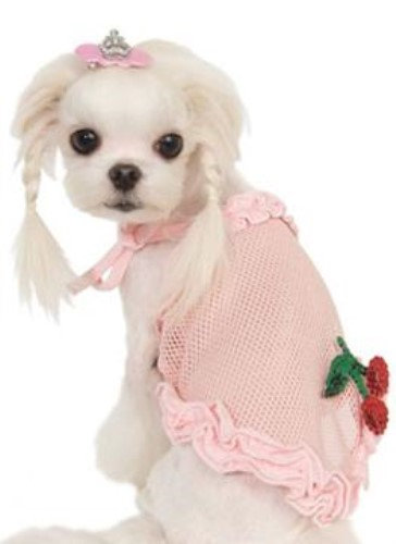 Puppy Angel Lovely Cherry Sleeveless Tank - pupan-lovcherryX-82C