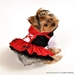 Red Riding Hood Costume - ant-red-hood-costumeL-J81