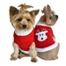 Red Rudolph Holiday Dog Sweater - dogdes-rudolph-sweater