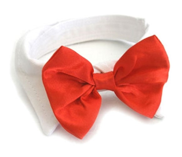 Red Satin Dog Bow Tie Collar