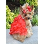 Red Satin Holiday Dog Dress with Leash   beds, puppy bed,  beds,dog mat, pet mat, puppy mat, fab dog pet sweater, dog swepet clothes, dog clothes, puppy clothes, pet store, dog store, puppy boutique store, dog boutique, pet boutique, puppy boutique, Bloomingtails, dog, small dog clothes, large dog clothes, large dog costumes, small dog costumes, pet stuff, Halloween dog, puppy Halloween, pet Halloween, clothes, dog puppy Halloween, dog sale, pet sale, puppy sale, pet dog tank, pet tank, pet shirt, dog shirt, puppy shirt,puppy tank, I see spot, dog collars, dog leads, pet collar, pet lead,puppy collar, puppy lead, dog toys, pet toys, puppy toy, dog beds, pet beds, puppy bed,  beds,dog mat, pet mat, puppy mat, fab dog pet sweater, dog sweater, dog winter, pet winter,dog raincoat, pe