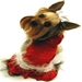 Red Velvet Dog Dress with Jewel Accent - hip-santadressX-D6V