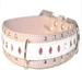 Remy Dog  Collar - kane-remy