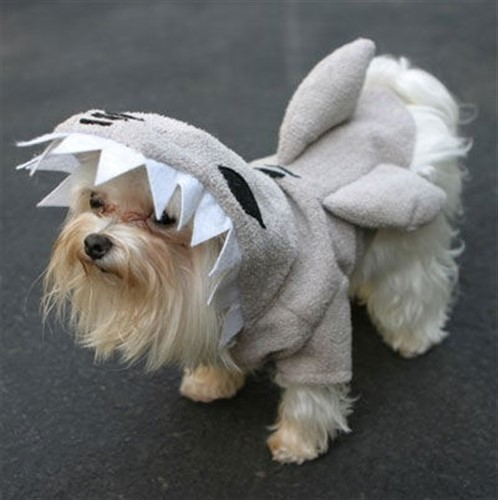 Shark Fins Pajama Pals Dog Costume - MD-sharkL-MNQ