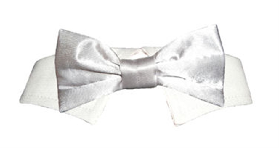 Silver Satin Dog Tie Set - po-silvertie