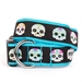 Skeletons Dog Collar & Lead      - wd-skeletons-collar