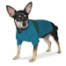 Ski Dog Sweater & Hat - Blue - dgo-skiblueX-FWG