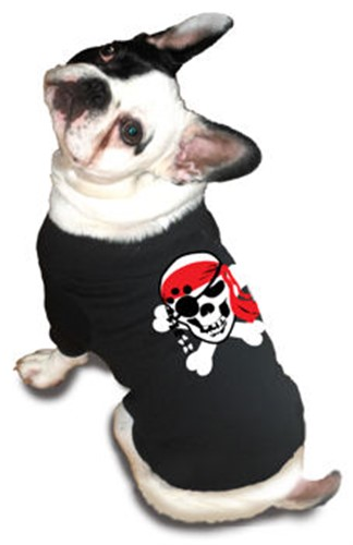 Skull Pirate Dog Tee Shirt - rrm-skullpirate