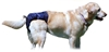 SnuggEase Dog Diapers - Up to 90 Lbs.