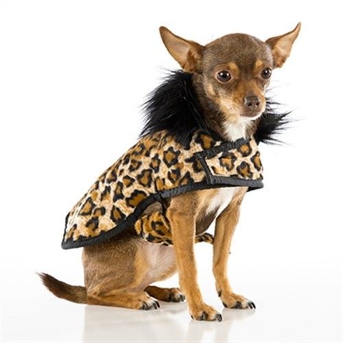 Soft Leopard Print Posh Puppy Coat - push-leopard-coat