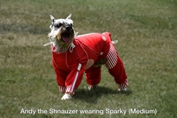 Sparky Suit wooflink, susan lanci, dog clothes, small dog clothes, urban pup, pooch outfitters, dogo, hip doggie, doggie design, small dog dress, pet clotes, dog boutique. pet boutique, bloomingtails dog boutique, dog raincoat, dog rain coat, pet raincoat, dog shampoo, pet shampoo, dog bathrobe, pet bathrobe, dog carrier, small dog carrier, doggie couture, pet couture, dog football, dog toys, pet toys, dog clothes sale, pet clothes sale, shop local, pet store, dog store, dog chews, pet chews, worthy dog, dog bandana, pet bandana, dog halloween, pet halloween, dog holiday, pet holiday, dog teepee, custom dog clothes, pet pjs, dog pjs, pet pajamas, dog pajamas,dog sweater, pet sweater, dog hat, fabdog, fab dog, dog puffer coat, dog winter jacket, dog col