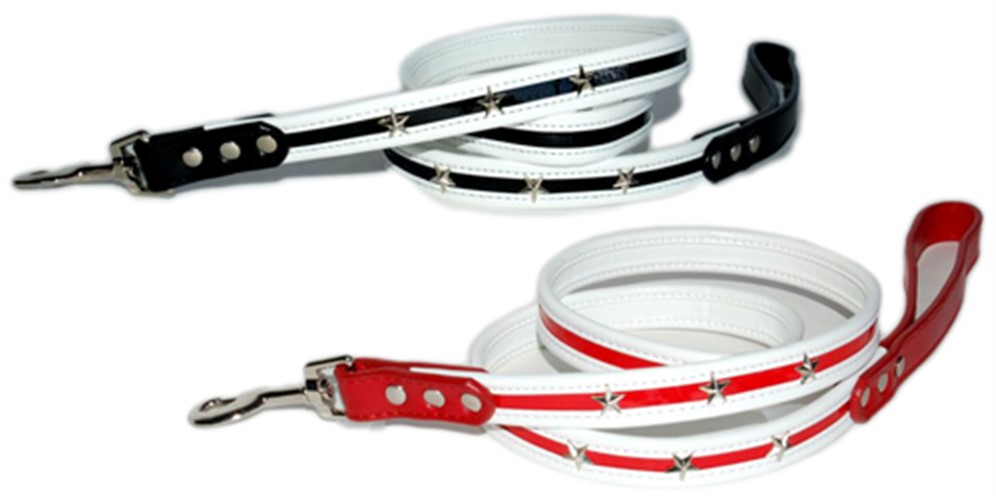 Star Dog Collar and Leash - dgo-star