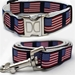 Stars N Stripes Dog Collar & Lead Collection - divdog-stars