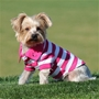 Stripe Polo - Many Colors   wooflink, susan lanci, dog clothes, small dog clothes, urban pup, pooch outfitters, dogo, hip doggie, doggie design, small dog dress, pet clotes, dog boutique. pet boutique, bloomingtails dog boutique, dog raincoat, dog rain coat, pet raincoat, dog shampoo, pet shampoo, dog bathrobe, pet bathrobe, dog carrier, small dog carrier, doggie couture, pet couture, dog football, dog toys, pet toys, dog clothes sale, pet clothes sale, shop local, pet store, dog store, dog chews, pet chews, worthy dog, dog bandana, pet bandana, dog halloween, pet halloween, dog holiday, pet holiday, dog teepee, custom dog clothes, pet pjs, dog pjs, pet pajamas, dog pajamas,dog sweater, pet sweater, dog hat, fabdog, fab dog, dog puffer coat, dog winter jacket, dog col