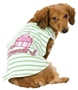Sweet Cupcake Tee kosher, hanukkah, toy, jewish, toy, puppy bed,  beds,dog mat, pet mat, puppy mat, fab dog pet sweater, dog swepet clothes, dog clothes, puppy clothes, pet store, dog store, puppy boutique store, dog boutique, pet boutique, puppy boutique, Bloomingtails, dog, small dog clothes, large dog clothes, large dog costumes, small dog costumes, pet stuff, Halloween dog, puppy Halloween, pet Halloween, clothes, dog puppy Halloween, dog sale, pet sale, puppy sale, pet dog tank, pet tank, pet shirt, dog shirt, puppy shirt,puppy tank, I see spot, dog collars, dog leads, pet collar, pet lead,puppy collar, puppy lead, dog toys, pet toys, puppy toy, dog beds, pet beds, puppy bed,  beds,dog mat, pet mat, puppy mat, fab dog pet sweater, dog sweater, dog winte