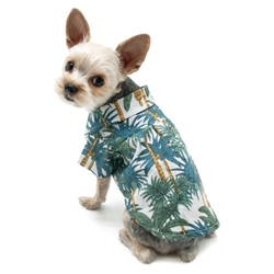 Tropical Leaf Shirt  wooflink, susan lanci, dog clothes, small dog clothes, urban pup, pooch outfitters, dogo, hip doggie, doggie design, small dog dress, pet clotes, dog boutique. pet boutique, bloomingtails dog boutique, dog raincoat, dog rain coat, pet raincoat, dog shampoo, pet shampoo, dog bathrobe, pet bathrobe, dog carrier, small dog carrier, doggie couture, pet couture, dog football, dog toys, pet toys, dog clothes sale, pet clothes sale, shop local, pet store, dog store, dog chews, pet chews, worthy dog, dog bandana, pet bandana, dog halloween, pet halloween, dog holiday, pet holiday, dog teepee, custom dog clothes, pet pjs, dog pjs, pet pajamas, dog pajamas,dog sweater, pet sweater, dog hat, fabdog, fab dog, dog puffer coat, dog winter jacket, dog col