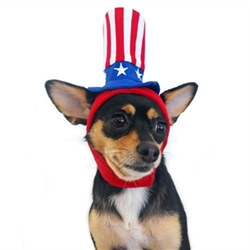 Uncle Sam Dog Hat