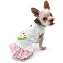 Watermelon Dress  wooflink, susan lanci, dog clothes, small dog clothes, urban pup, pooch outfitters, dogo, hip doggie, doggie design, small dog dress, pet clotes, dog boutique. pet boutique, bloomingtails dog boutique, dog raincoat, dog rain coat, pet raincoat, dog shampoo, pet shampoo, dog bathrobe, pet bathrobe, dog carrier, small dog carrier, doggie couture, pet couture, dog football, dog toys, pet toys, dog clothes sale, pet clothes sale, shop local, pet store, dog store, dog chews, pet chews, worthy dog, dog bandana, pet bandana, dog halloween, pet halloween, dog holiday, pet holiday, dog teepee, custom dog clothes, pet pjs, dog pjs, pet pajamas, dog pajamas,dog sweater, pet sweater, dog hat, fabdog, fab dog, dog puffer coat, dog winter jacket, dog col