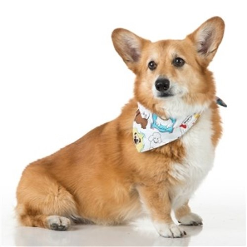 White Pooches Dog Bandana - push-pooches