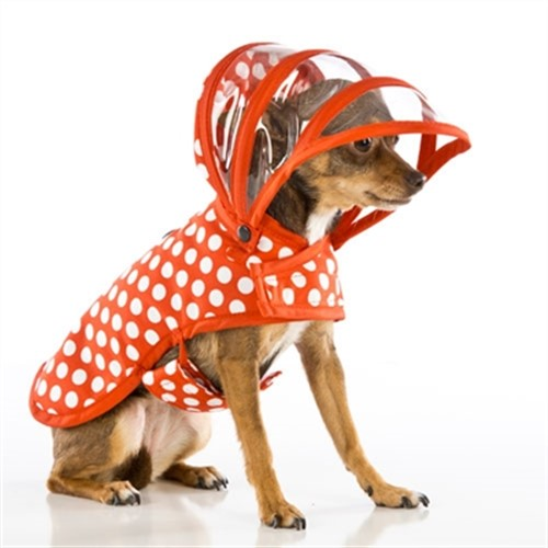 White & Red Dot Dog Raincoat   - push-red-raincoat