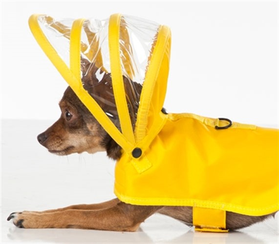Yellow Dog Raincoats  - push-yellow-coat