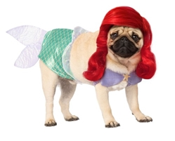 Authentic Ariel Dog Costume Your pup is sure to stand out in this Sweet Ariel Dog Costume