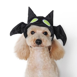 Bat Hat Roxy & Lulu, wooflink, susan lanci, dog clothes, small dog clothes, urban pup, pooch outfitters, dogo, hip doggie, doggie design, small dog dress, pet clotes, dog boutique. pet boutique, bloomingtails dog boutique, dog raincoat, dog rain coat, pet raincoat, dog shampoo, pet shampoo, dog bathrobe, pet bathrobe, dog carrier, small dog carrier, doggie couture, pet couture, dog football, dog toys, pet toys, dog clothes sale, pet clothes sale, shop local, pet store, dog store, dog chews, pet chews, worthy dog, dog bandana, pet bandana, dog halloween, pet halloween, dog holiday, pet holiday, dog teepee, custom dog clothes, pet pjs, dog pjs, pet pajamas, dog pajamas,dog sweater, pet sweater, dog hat, fabdog, fab dog, dog puffer coat, dog winter ja