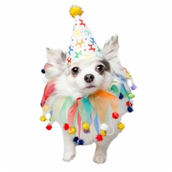 Celebration/Birthday Hat & Collar Set  Roxy & Lulu, wooflink, susan lanci, dog clothes, small dog clothes, urban pup, pooch outfitters, dogo, hip doggie, doggie design, small dog dress, pet clotes, dog boutique. pet boutique, bloomingtails dog boutique, dog raincoat, dog rain coat, pet raincoat, dog shampoo, pet shampoo, dog bathrobe, pet bathrobe, dog carrier, small dog carrier, doggie couture, pet couture, dog football, dog toys, pet toys, dog clothes sale, pet clothes sale, shop local, pet store, dog store, dog chews, pet chews, worthy dog, dog bandana, pet bandana, dog halloween, pet halloween, dog holiday, pet holiday, dog teepee, custom dog clothes, pet pjs, dog pjs, pet pajamas, dog pajamas,dog sweater, pet sweater, dog hat, fabdog, fab dog, dog puffer coat, dog winter ja