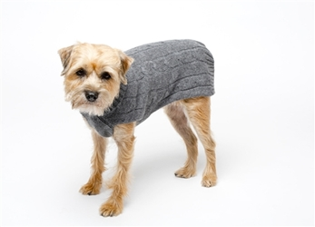 Cashmere Dog Sweater in 2 Colors